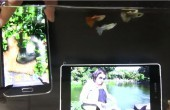 Samsung Galaxy S5 und Sony Xperia Z2 im ultimativen Wasser-Test [Video]