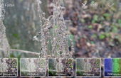 Samsung Galaxy Camera Test 66 170x110 Samsung Galaxy Camera im ausführlichen Test