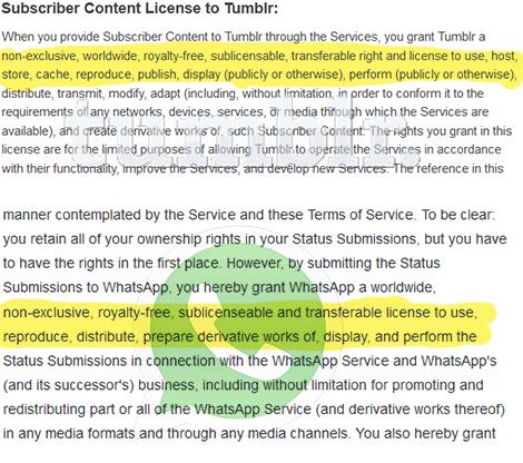 Die Benutzungsbedingungen von Whatsapp und Tumblr im Vergleich