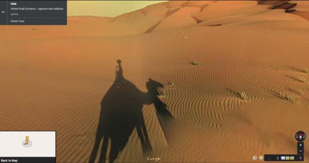 Schatten des Street View-Kamels