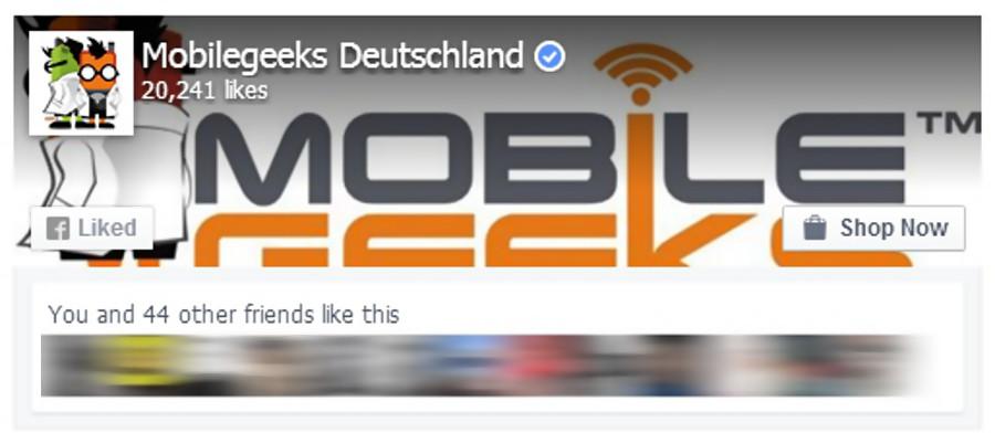 So sähe das Facebook Page Plugin aus (wenn wir es einsetzen würden)
