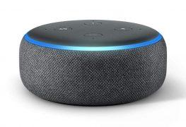 Echo: So einfach lassen sich Daten des Lautsprechers wiederherstellen