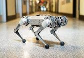 Cheetah 3 – Roboter schafft Salto aus dem Stand