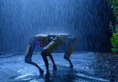 """""""Spot"""": Roboter von Boston Dynamics kann jetzt gekauft werden"""