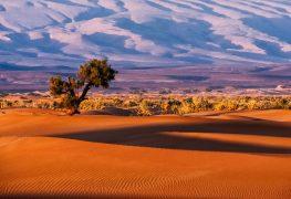 Längstes Unterseekabel der Welt liefert Strom von Marokko ins Königreich